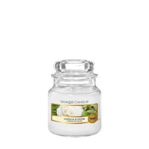Camellia-Blossom-Small-Classic-Jar